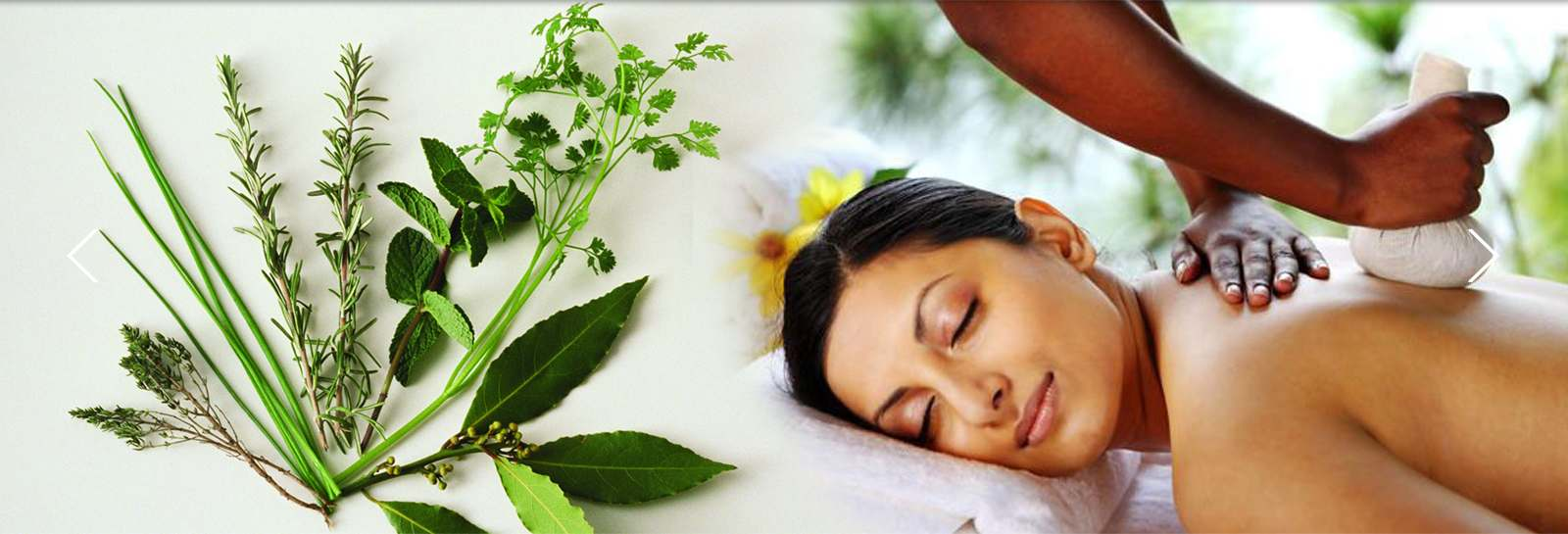 ayurvedic wellness packages in kochi, ernakulam