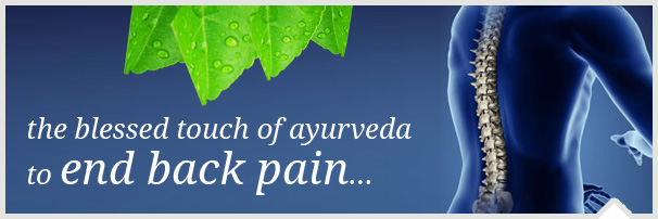 back pain therapy in kochi, ernakulam